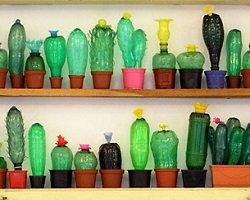 Мастерство ресайклинга из пластиковых бутылок