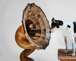 Дизайнерский граммофон из натурального дерева