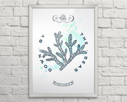Постер Coral A3