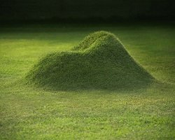 Кресло из травы by Studio Nucleo