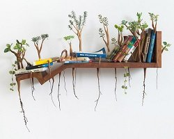 Причудливые деревянные скульптуры by Camille Kachani