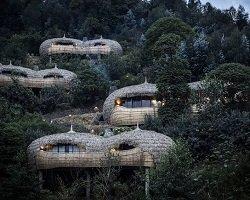Эко-домики среди лесов Руанды